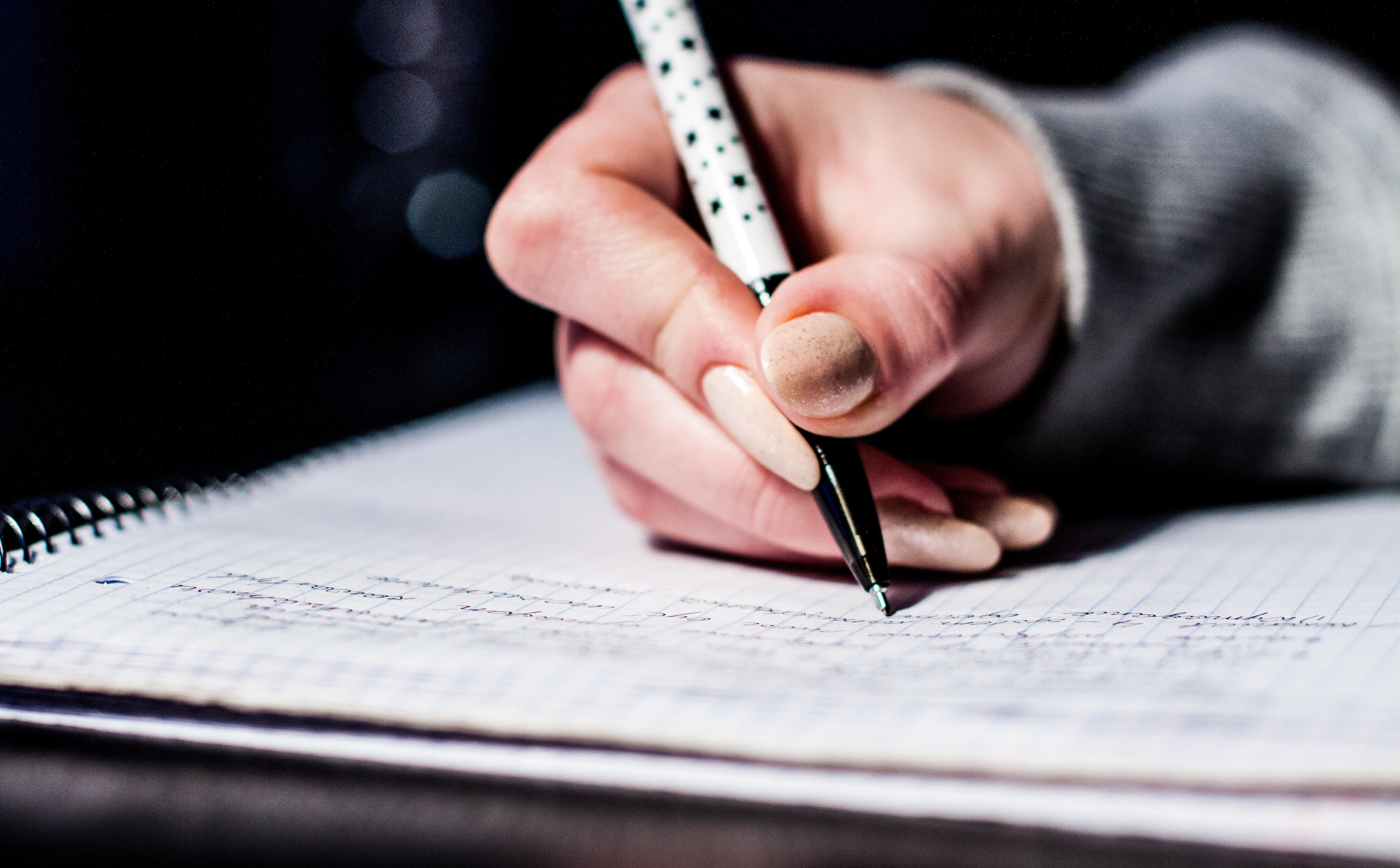 lp-ecomn-enseignements-formation-professionnelle-licence